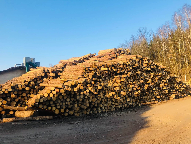 drewno-1.jpg
